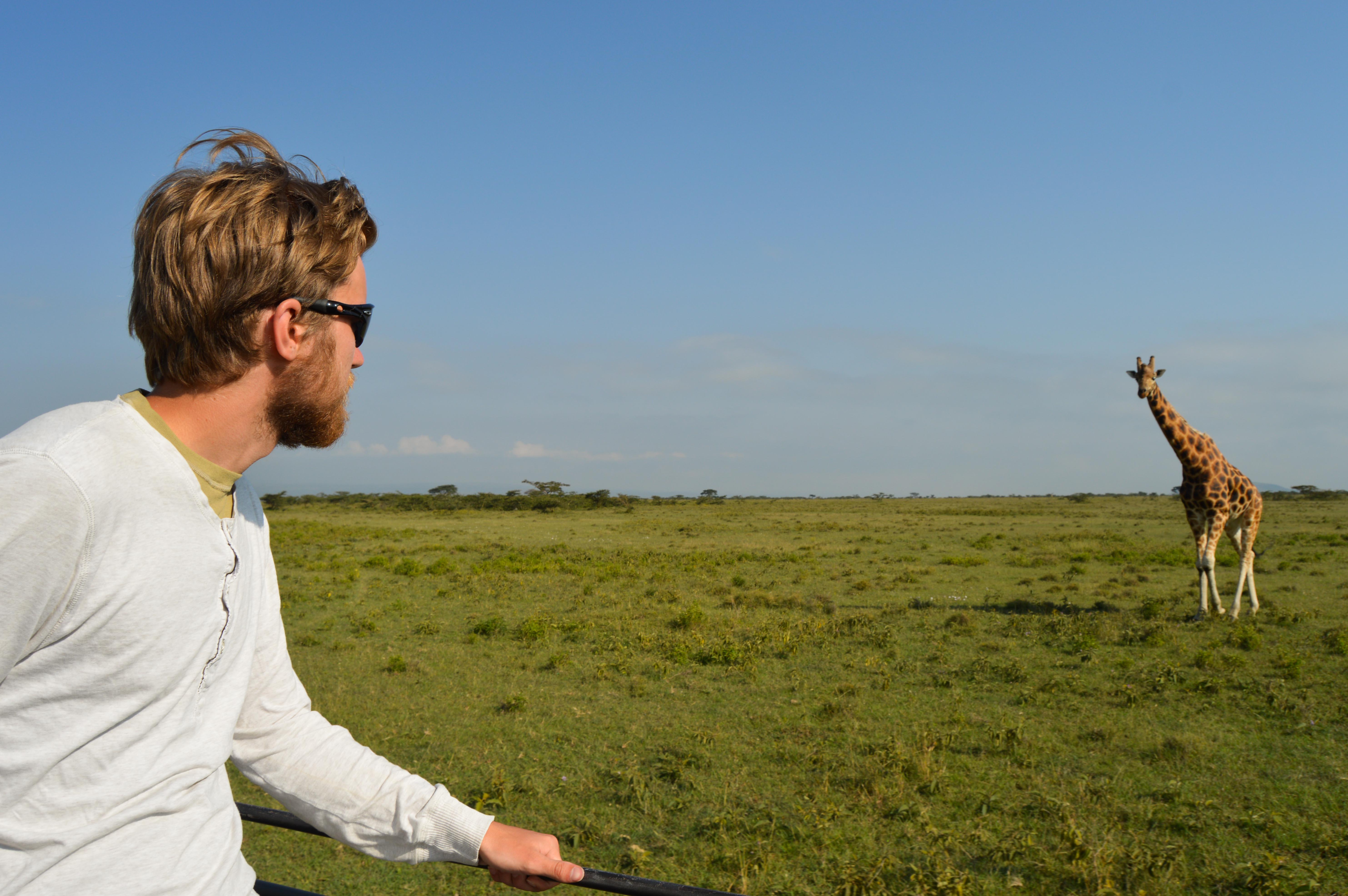 A male Projects Abroad volunteer spots a male giraffe whilst out and taking part in his Wildlife conservation volunteer work in Kenya.
